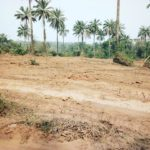 Places to Buy Cheap Land